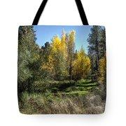 The Magic Of Fall Tote Bag