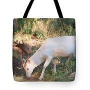 The Magical Deer 3 Tote Bag