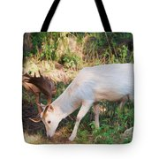 The Magical Deer Tote Bag