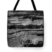 The Magnificent Grand Canyon Tote Bag