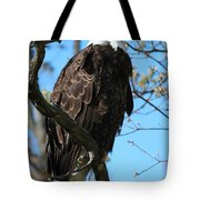 The Majestic One  Tote Bag by Sheila Werth