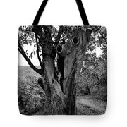 The Maltreated One Tote Bag