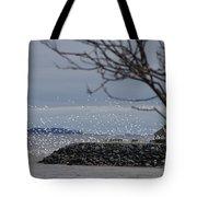 The Marina Tote Bag