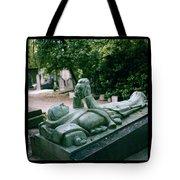 The Mask Of Meditation Tote Bag