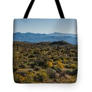 The Mcdowell Mountains Tote Bag