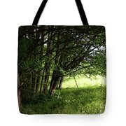The Meeting Of Two Worlds Tote Bag