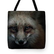 In The Dark Of The Night Tote Bag