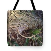 The Mighty Has Fallen Tote Bag