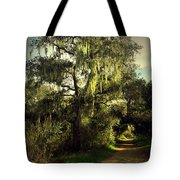 The Mighty Oaks Of Garland Ranch Park 2 Tote Bag