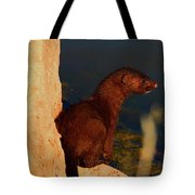 The Mink Tote Bag