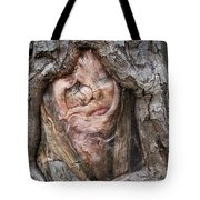 The Mirror Of Old Age Tote Bag