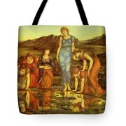 The Mirror Of Venus  Tote Bag