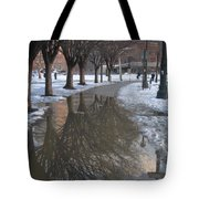 The Mirrored Streets Of Philadelphia In Winter Tote Bag