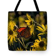 The Monarch And The Sunflower Tote Bag