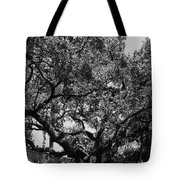 The Monastery Tree Tote Bag