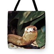 The Monocled Cobra Tote Bag