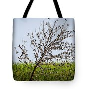 The More The Merrier- Tree Swallows  Tote Bag