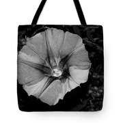 The Morning In Glory Tote Bag