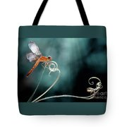 The Morning Story Tote Bag