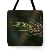 The Most Fabulous Spa..  Tote Bag