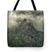 The Mountains Of Alaska  Tote Bag