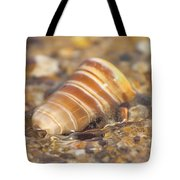 The Moving Tide Tote Bag