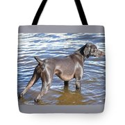 The Muddy Mississippi Tote Bag