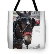 The Mule That Poses Tote Bag