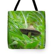 The Mushroom Tote Bag