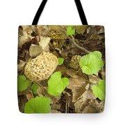 The Mushroom Trio Tote Bag