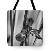 The Mystery Of Spring 2 Bw Tote Bag