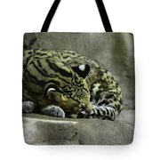The Napping Rock Tote Bag