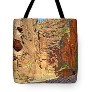 The Narrows Study 2 Tote Bag