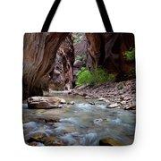 The Narrows, Zion National Park, Utah Tote Bag