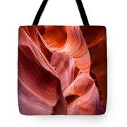 The Natural Sculpture 8 Tote Bag