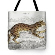 The Naturalist Library Tote Bag