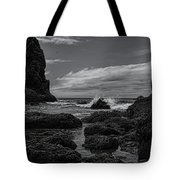 The Needles Black And White Tote Bag