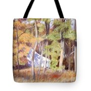 The Neighbor In Back Tote Bag