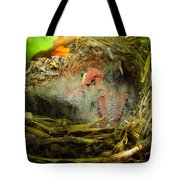 The Next Generation Hatched Tote Bag