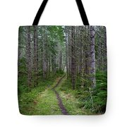 The Next Leg Of The Journey Tote Bag