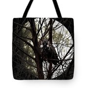 The Night Owl And Harvest Moon Tote Bag