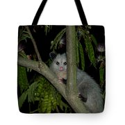 The Night Visitor Tote Bag