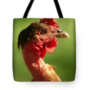 The Noble Transylvanian Naked Neck Chicken In Profile Tote Bag
