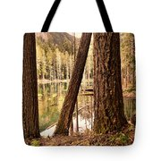 The Not To Distant Shore Tote Bag
