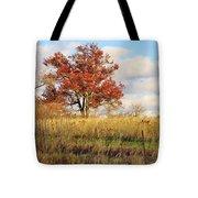Red Oak Under November Skies Tote Bag