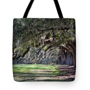 The Oaks At Boone Hall Tote Bag