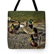 The Odd One Out Tote Bag