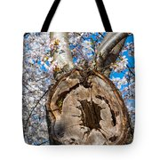 The Old Cherry Tree Tote Bag
