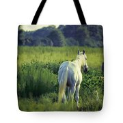 The Old Grey Mare Tote Bag
