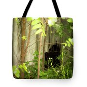 The Old Homestead #10 Tote Bag